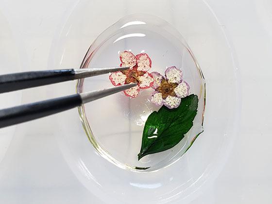 レジンと押花で作るヘアアクセサリーの作り方